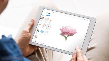 Dropbox iOS 11 update iPad