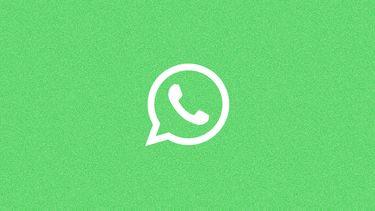 WhatsApp logo ruis 16x9