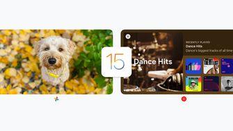 Google iOS 15