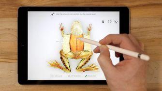 Froggipedia iPad 16x9