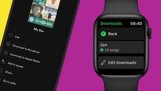 Spotify Apple Watch iOS 14.7